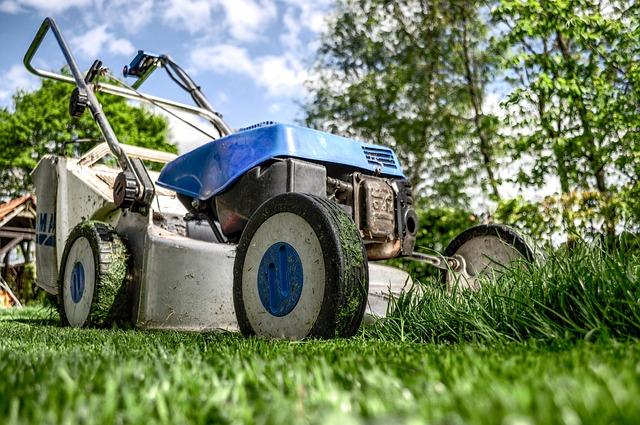 Elektryczne kosiarki do trawy z napędem na Ceneo pozwolą ci dobrze wybrać kosiarkę